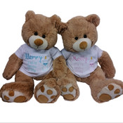 New Baby Personalized Twins Teddy Bear Gift.. Harry