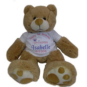 Personalised Princess First Birthday Teddy Bear