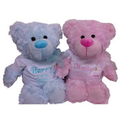 New Baby Personalized Twins Teddy Bear Gift.. Baby Animals